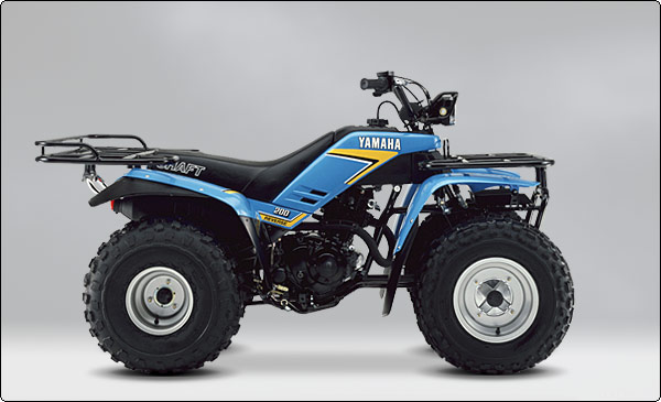 Brookhaven Yamaha Atv